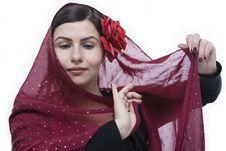 Free Flamenco Portrait Stock Images - 29112164