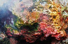 Free Inside Batur Volcano Royalty Free Stock Photography - 29118767