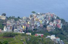 Corniglia Village Royalty Free Stock Photography