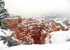 Free Winter In Bryce Canyon Royalty Free Stock Photography - 29128607