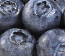 Blueberries Stock Image