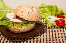 Free Sandwich With Beef Royalty Free Stock Image - 29135486