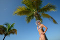 Free Woman In Summer Hat Sunbathing Under A Palm Tree On A Background Stock Image - 29142611