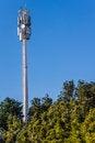 Free Telecommunication Mast And Green Trees Stock Image - 29145671