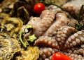 Free Fresh Raw Octopus Royalty Free Stock Photography - 29148267