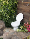 Free The Toilet In The Garden Stock Images - 29153594