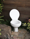Free The Toilet In The Garden Stock Image - 29153621