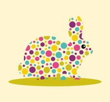 Free Rabbit Spotted Royalty Free Stock Photography - 29154617