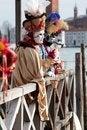 Free Venice Carnival Mask Royalty Free Stock Photo - 29162795