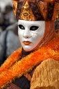 Free Venice Carnival Mask Stock Image - 29163251