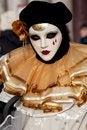 Free Venice Carnival Mask Stock Photography - 29163262