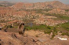 Free Monkey Overlooking Boulder Landscape Stock Image - 29164201