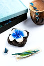 Free Aromatherapy Set With Flower Candle And Incense Royalty Free Stock Photo - 29178145