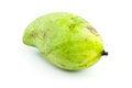 Free Green Mango Isolated Royalty Free Stock Image - 29181496