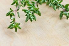 Free Thyme Royalty Free Stock Photo - 29181505