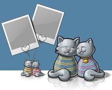 Free Cat Photo Holder Royalty Free Stock Image - 29184286