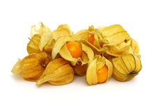 Free Cape Gooseberry &x28;physalis&x29; Stock Images - 29184924