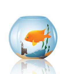 Free Vector Fish In A Bowl Stock Photography - 29189332