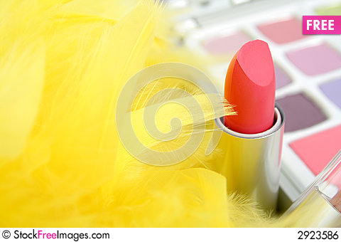 Free Feathers And  Lipstick Royalty Free Stock Image - 2923586
