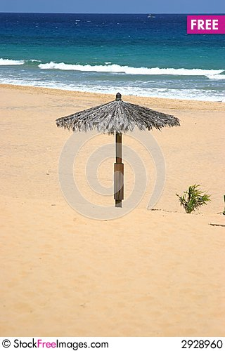 Free Lonely Sun Shade Stock Photo - 2928960