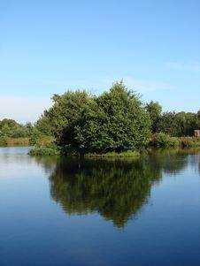 Course Fishing Pond Stock Image