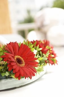 Bouquet With Red Flowerses Royalty Free Stock Images