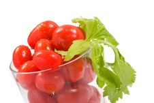 Free Tomato Juice Stock Images - 2928394