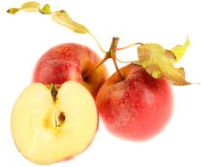 Free Apples Royalty Free Stock Photography - 29209697