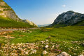 Free Durmitor National Park  Montenegro Royalty Free Stock Photography - 29210477