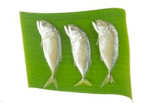 Free Mackerel Fishes On Banana Leaf Stock Images - 29215344