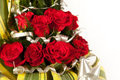 Free Red Rose Flowers  With Water Drops Stock Photos - 29225763