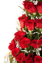 Free Red Rose Flowers  With Water Drops Royalty Free Stock Photos - 29225778
