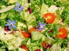 Free Summer Salad Stock Photos - 29220033