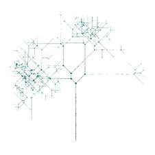 Network Tree Stock Photo