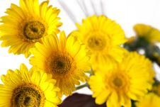 Free Bouquet Of Yellow And White  Flowers Royalty Free Stock Photography - 29225797