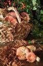 Free Basket With Mushrooms Royalty Free Stock Photo - 29231805