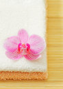 Free Towels And Orchid Flower Royalty Free Stock Photo - 29239935