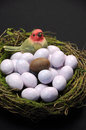 Free Chocolate Easter Egg Among Sugar Coated Candy Marble Eggs In Birds Nest Royalty Free Stock Image - 29254366