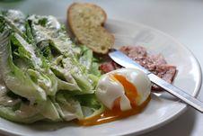 Free Cesear Salad Royalty Free Stock Photo - 29253825