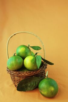 Free Green Citrus Royalty Free Stock Images - 29254429