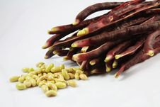 Free Red Beans Stock Photos - 29254693