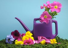Free Spring Setting With Purple Watering Can. Royalty Free Stock Images - 29254919