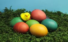 Free Easter Rainbow Eggs With Yellow Chick Stock Images - 29255054