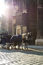 Free Horse Carriage In Vienna Stock Image - 29261891