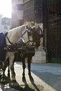 Free Horse Carriage In Vienna Stock Photo - 29261900