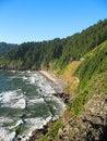 Free Ocean Along The Oregon Coast Stock Photography - 29264002
