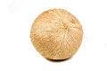 Free Fresh Coconut Isolated Royalty Free Stock Photos - 29267618