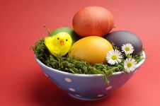 Free Happy Easter Still Life With Rainbow Color Eggs Against A Red Background. Royalty Free Stock Photo - 29263205