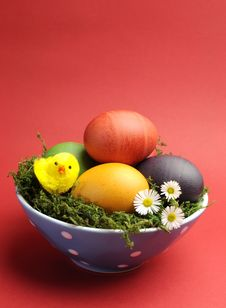 Free Happy Easter Still Life With Rainbow Color Eggs Against A Red Background - Vertical. Royalty Free Stock Image - 29263236