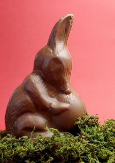 Free Australian Easter Bunny Rabbit Alternative, A Chocolate Bilby Holding An Egg - Vertical Stock Photos - 29264193